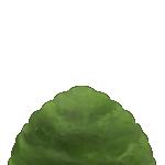騎士学舎【深緑】